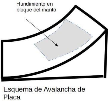Avalanchaplaca